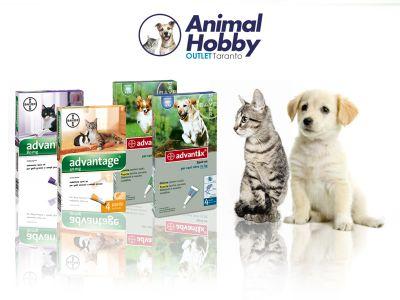 offerta vendita antiparassitari cani e gatti promozione distribuzione antiparassitari