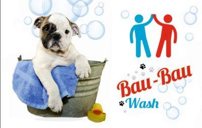 offerta toelettatura cani omaggio toeletta cani self service terni centro