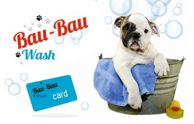 Bau Bau Wash offerta servizio tolettatura professionale - occasione servizio self service terni