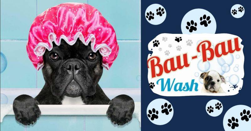 BAU BAU WASH offerta toelettatura self service - occasione servizio lavaggio cani professionale