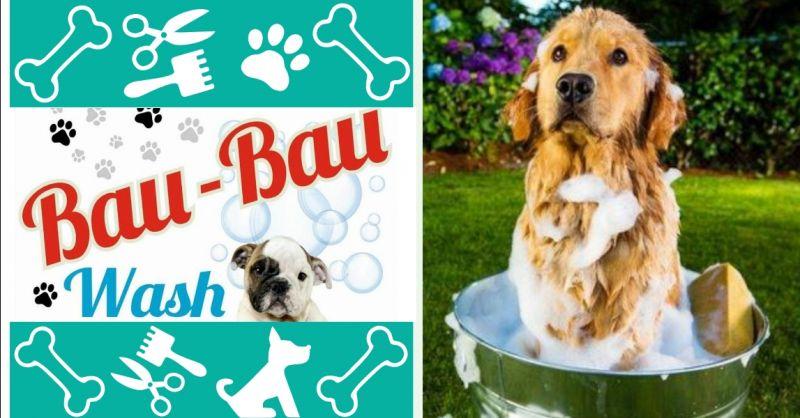 BAU BAU WASH offerta servizio tosatura cani a Terni - occasione negozio di toelettatura a Terni
