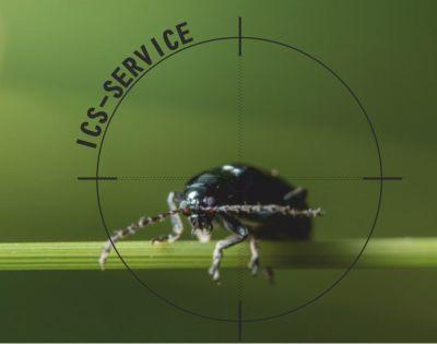 offerta disinfestazioni insetti ics service promozione sanificazione parassiti ics service