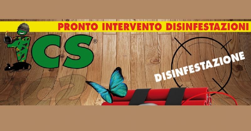 offerta ditta disinfestazioni Como