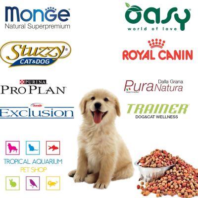 offerte alimenti cane gatto promozioni alimenti animali domestici