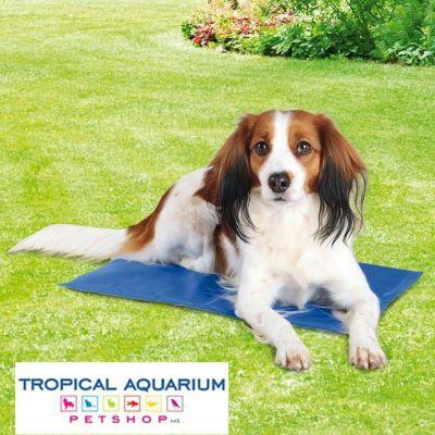 tappetini refrigeranti in promozione da tropical aquarium