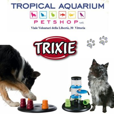 giochi intelligenti per cani
