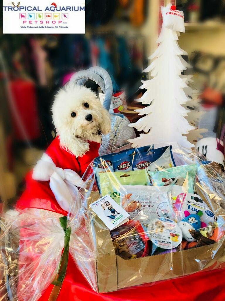 Cesto natalizio cane - gatto da Tropical Aquarium Petshop