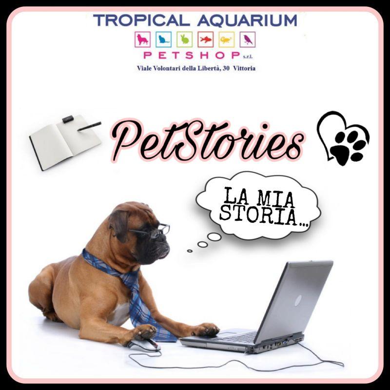 Petstories - raccontaci la storia del tuo amico a 4 zampe