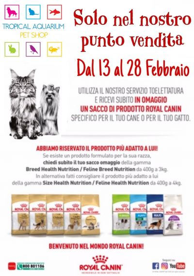 un sacco omaggio royal da tropical aquarium petshop