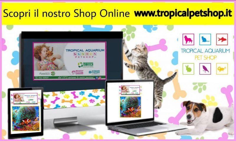 Shop Online di Tropical Aquarium Petshop