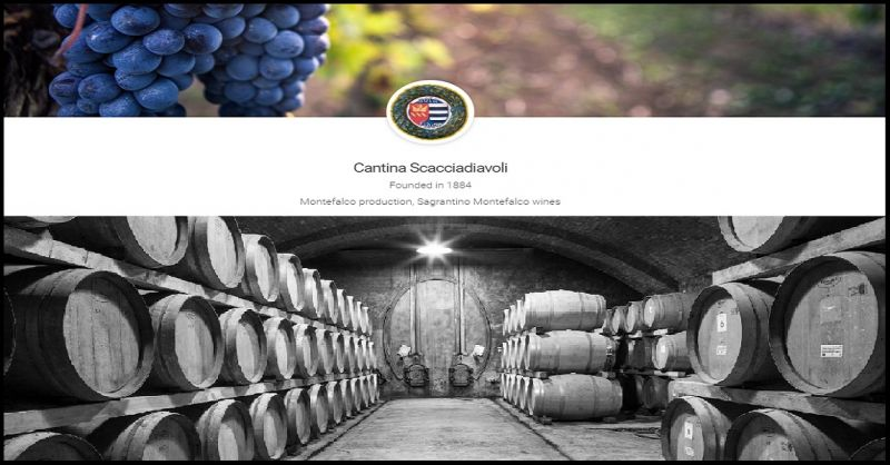 OFFER Italian sagrantino montefalco wines - from Umbria buy  on line  sagrantino red wine price