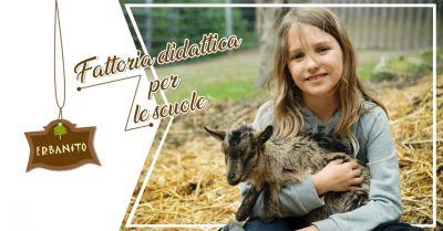 offerta fattoria didattica per bambini fattoria per ragazzi progetto scuole erbanito