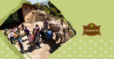 offerta fattoria didattica vallo di diano occasione attivita didattiche bambini vallo di diano