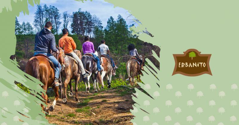 Offerta Equitazione Vallo di Diano - Occasione Agriturismo con Maneggio Vallo di Diano