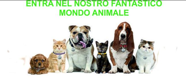 Mondo Animale - Offerta articoli per animali - occasione prodotti igiene cura piccoli animali