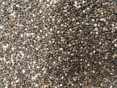 seme di chia per uso in ornitologia confezione da 1kg