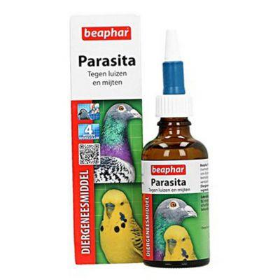 offerta parasita