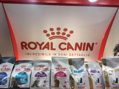 offerta mangime royal canin