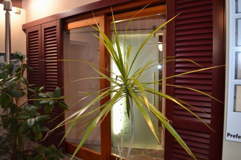 offerta progettazione su misura porte e finestre livorno