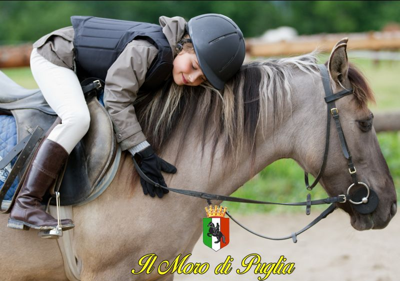 Offerta settimane vacanze a cavallo Taranto - Promozione vacanze in masseria bambini Taranto