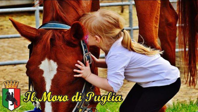 Offerta Maneggio Ippoterapia taranto Puglia - pet therapy cavalli scuola equitazione crispiano