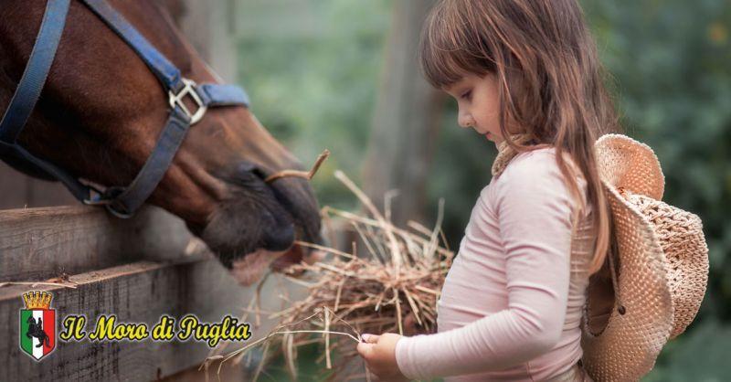 Offerta Interventi assistiti con il mezzo cavallo  Crispiano – Promozione ippoterapia per adulti e bambini Puglia