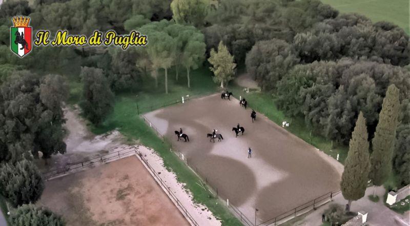 Offerta progetto diversamente abili Crispiano – Promozione attività ricreative e lavorative per i disabili Taranto