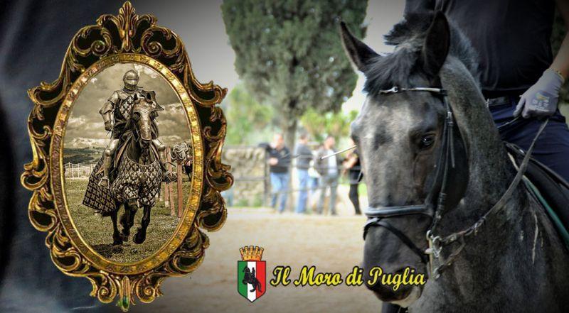 Moro di Puglia - Offerta sede distaccata Scuola Real Cavallerizza Crispiano – Promozione scuola equitazione antica arte del cavalcare Taranto
