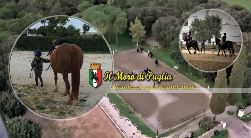 Il Moro di Puglia - occasione scuola di equitazione di base taranto - promozione lezione di formazione equestre base