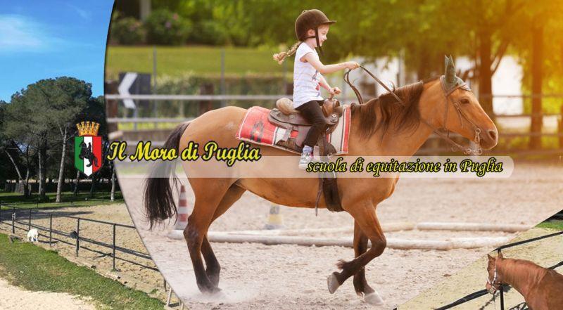 Offerta Scuola di equitazione in Puglia tutto anno taranto - promozione lezioni di equitazione taranto
