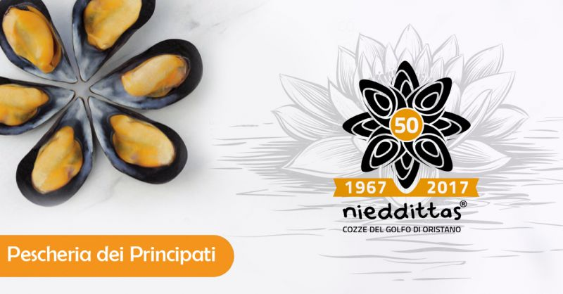 Offerta vendita cozze Nieddittas a Salerno - Promozione distribuzione cozze fresche Salerno