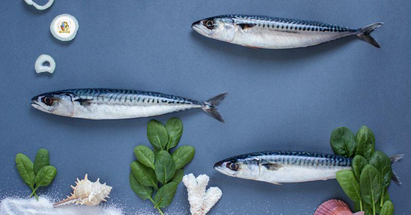 Offerta comprare pesce fresco a Salerno - Promozione spesa pesce fresco formato famiglia