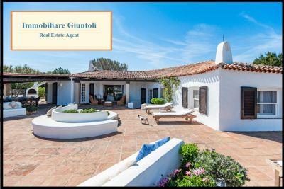 immobiliare giuntoli offerta villa in affitto sul mare con piscina a porto rotondo sardegna