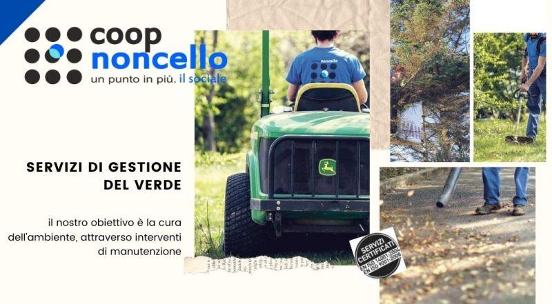 Offerta servizio di potatura alberi ad alto fusto a Pordenone – occasione DISERBO DI AREE PUBBLICHE E PRIVATE a Pordenone