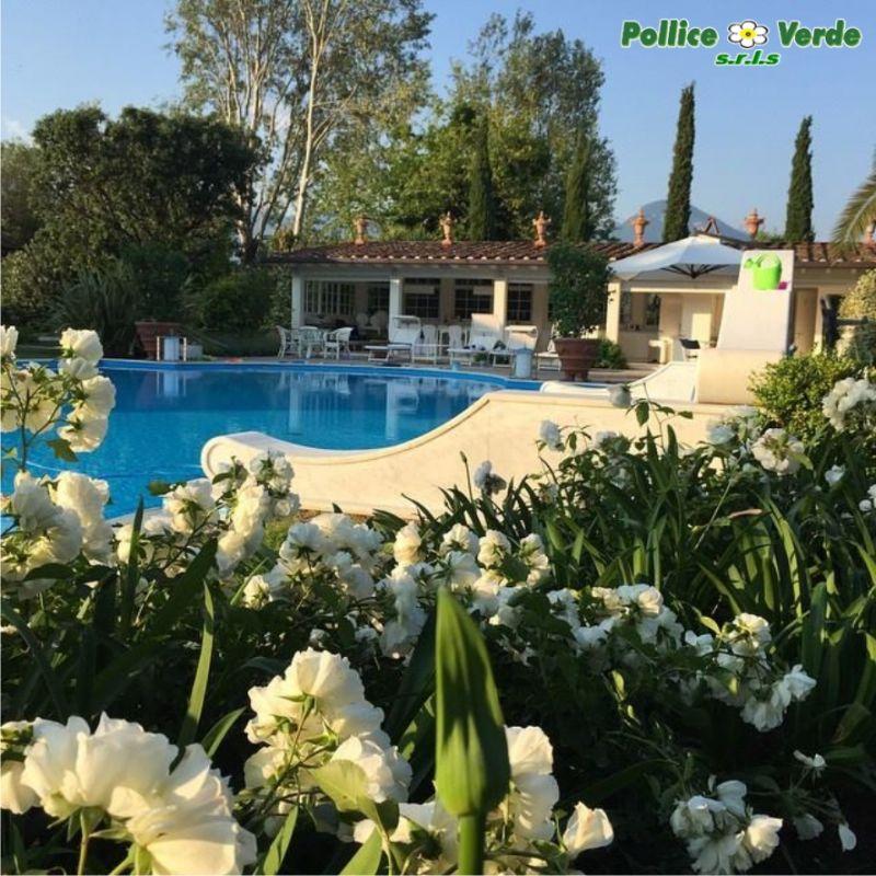 Vivaio a Viareggio - Arredo da giardino a Viareggio