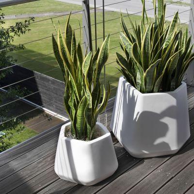 offerta vasi per piante resina versilia promozione vasi per piante resina versilia