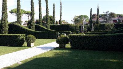 offerta giardinaggio professionale viareggio promozione potatura giardino viareggio