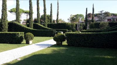 offerta giardinaggio professionale versilia forte dei marmi potatura giardino forte dei marmi
