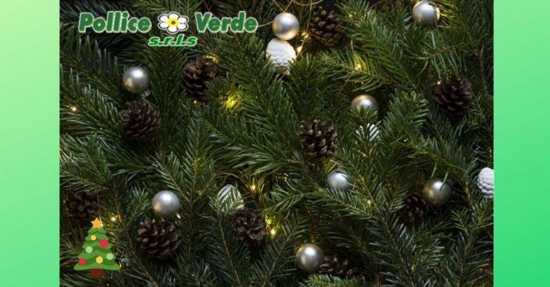 offerte albero di Natale Lucca Versilia - promozione addobbi natalizi  Versilia Lucca