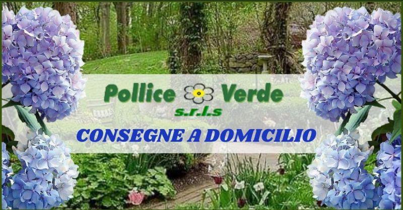 consegna a domicilio piante fiori Viareggio e Versilia - consegna a domicilio Forte dei Marmi e Pietrasanta