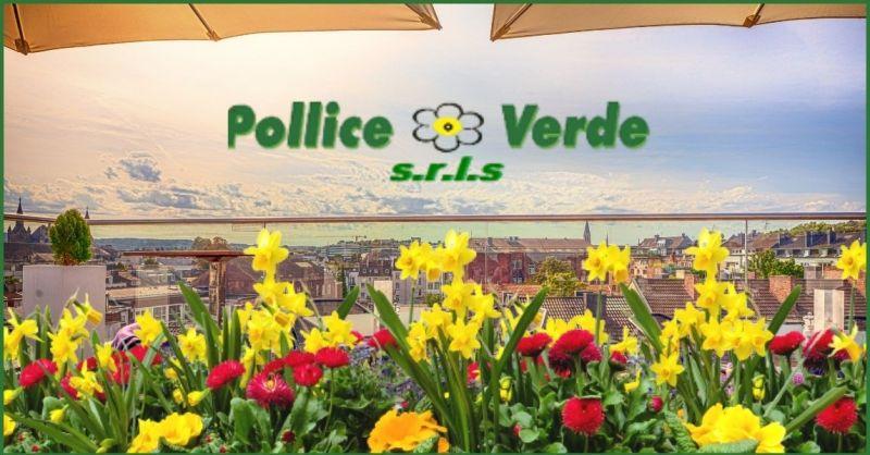 offerta fiori estivi per il balcone e il giardino Versilia - POLLICE VERDE