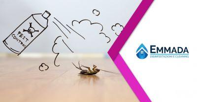 offerta ditta deblattizzazione insetti parassiti servizi deblattizzazione sicilia orientale