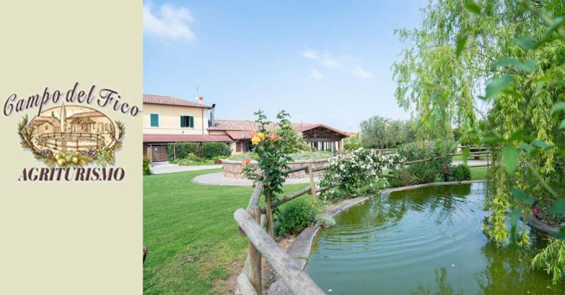 Offerta pernottamento Bed and Breakfast a Latina - occasione dormire ad Aprilia in Agriturismo