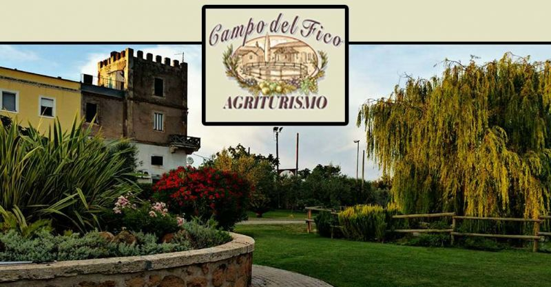 offerta Mangiare e dormire a Latina - occasione Bed and Breakfast ad Aprilia B&B