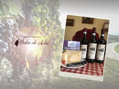 offerta distribuzione vino dolcetto artigianale promozione vendita vino dolcetto vellutato