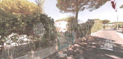 offerta vendita terreno edificabile lavinio occasione vendita terreno residenziale ardeatina