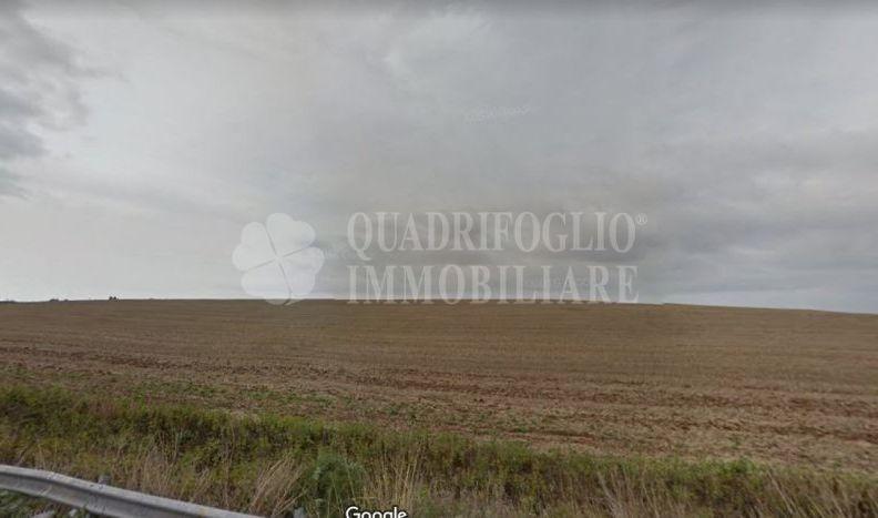 Offerta vendita terreno agricolo Castel Romano - occasione terreno agricolo in vendita Pontina