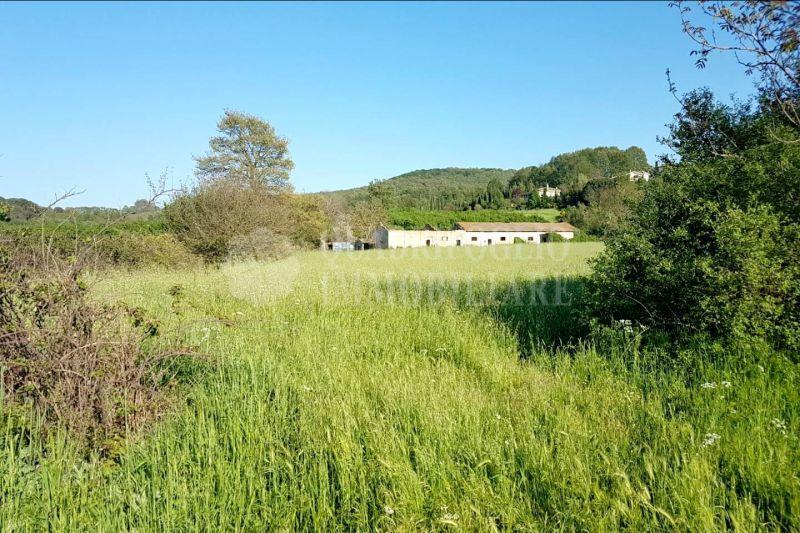 Offerta vendita terreno Oriolo Romano - occasione fabbricato rurale in vendita Oriolo Romano