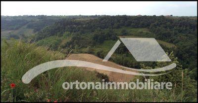 ortonaimmobiliare occasione vendita azienda agricola terreno casolare ad ortona chieti italy