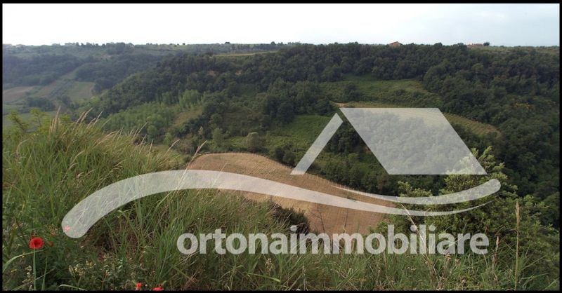 Ortonaimmobiliare - Sale opportunity farm with land and farmhouse in Ortona Chieti Italy